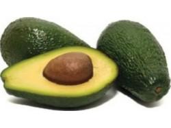 Avocat bio