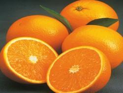 Orange Valencia Bio