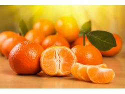 Clementine Bioi