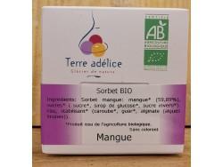 Sorbet Mangue Bio