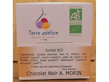 Sorbet Chocolat Bio